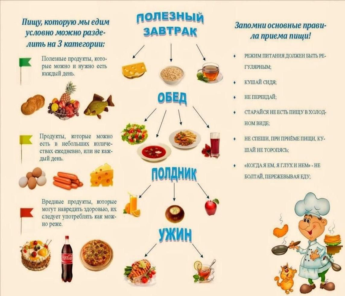 образом одеждой, правила здорового питания в картинках заз
